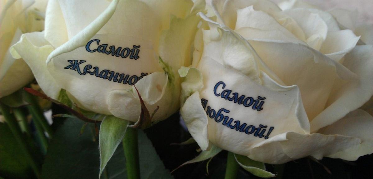 Днем рождения, картинки с розами с надписями жене