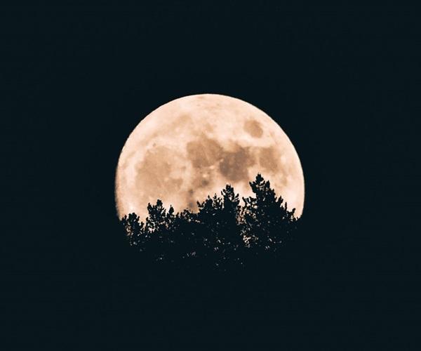 Влияние луны по гороскопу